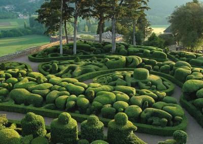 Sculpted boxwood. Jardins de Marqueyssac.